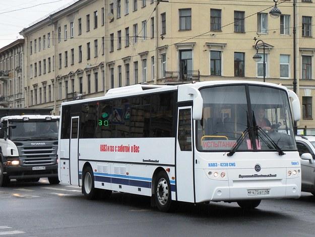 кавз 4238 CNG, городской автобус на метане