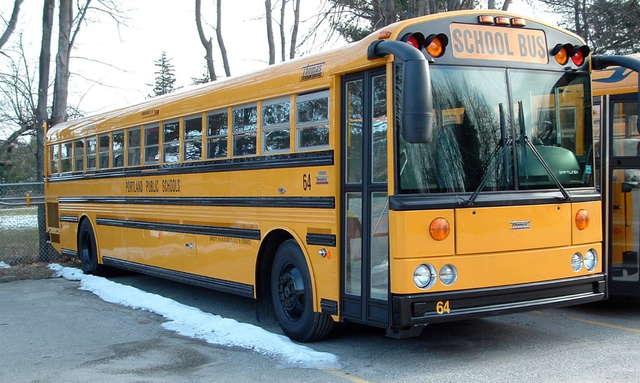 автобус на природном газе, Blue Bird Type D CNG
